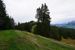 DSC02413 (Bergwandern Alpen) Tags: alpen alps bergwandern hiking kantonschwyz halbegg furggelenstock
