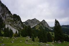 DSC02280 (Bergwandern Alpen) Tags: alpen alps bergwandern hiking kantonschwyz holzegg wannenweidli kleinmythen haggenspitz