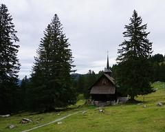 DSC02306 (Bergwandern Alpen) Tags: alpen alps bergwandern hiking kapelle kantonschwyz holzegg brklausenkapelle bergkapelle chapel firs