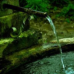 Cow Water (Dan Daniels) Tags: wateringtrough trough water keintrinkwasser nikond90 audand riehen kantonbaselstadt schweiz switzerland pipes pastures graphicconverter