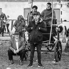 Traveller family group (Frank Fullard) Tags: frankfullard fullard candid street portrait group culture ballinasloe horse fair travellers irishtravellers pony trade buy sell black white blanc noir monochrome galway ireland tradition heritage