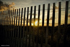 Monday morning light....HFF!!! (Joe Hengel) Tags: mondaymorninglight lewes lowerslowerdelaware lsd lewesde delaware de fence fenceline fencefriday hff happyfencefriday sussexcounty watchingthesunrise sunrise sun sunlight fall sky clouds morning morninglight rooseveltinlet silhouette silhouettes dunes dunegrass