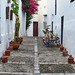 Decorative bicycle and bougainvillea