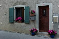 L'entrée du numéro 5 (Lise Tiolu) Tags: bâtiment entrée porte volets nikon 1v3 fleurs