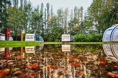 Autumnal campsite. (Darren Speak) Tags: trees puddle water reflections caravans york