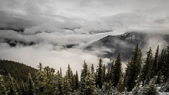 Above the Clouds (Daveography.ca) Tags: foggy mountaintop sulphurmountain mist mountains clouds trees rockies rockymountains cloud banff canada banffnationalpark fog alberta cloudy valley mountain