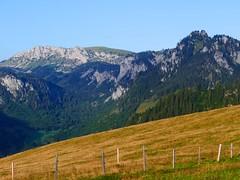 Von Zwischenflüh zum Seebergsee (Martinus VI) Tags: tags hinzufügen diemtigtal diemtigen zwischenflüh august y190831 wanderung bergwanderung keymahi0068 kanton de canton bern berne berna berner bernese schweiz suisse suiza switzerland svizzera swiss martinus6 martinus6xy martinus vi hillside