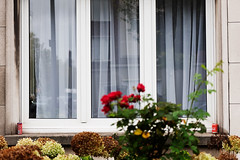 one coke please (kceuppens) Tags: cola coke cocacola red rood window raam venster antwerp antwerpen belgium belgië straat street house huis nikond810 nikkor247028vr nikon nikkor d810 2470