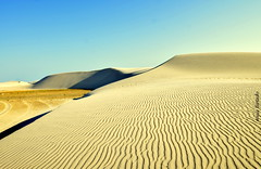 Sexta-poser (sonia furtado) Tags: sextaposer portodomangue dunas costabranca litoralnorte rn ne brasil brazil soniafurtado frenteafrente