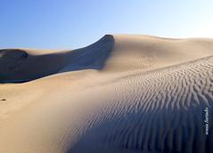 Sexta-poser (sonia furtado) Tags: sextaposer portodomangue dunas costabranca litoralnorte rn ne brasil brazil soniafurtado