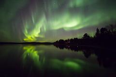 Aurora 4.10.2019 (Hotel Korpikartano) Tags: auroraborealis northernlights revontulet irix15mm canon6d inarilapland finnishlapland finland hotelkorpikartano nightphoto nightsky nightphotography yö