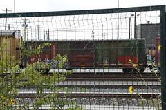 FXE 874286 (atucker2976) Tags: texlahomarailfantripseptember2019 fortworthtexas unionpacificupdavidsonyard ferromex
