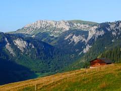 Diemtigtal: Rothore, Blutte Hubel (Martinus VI) Tags: tags hinzufügen diemtigtal diemtigen zwischenflüh august y190831 wanderung bergwanderung keymahi0068 kanton de canton bern berne berna berner bernese schweiz suisse suiza switzerland svizzera swiss martinus6 martinus6xy martinus vi hillside