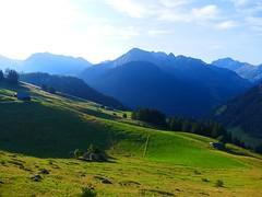 bei Brüüscht Zwischenflüh Diemtigen (Diemtigtal): Blick Richtung Wiriehorn (Martinus VI) Tags: tags hinzufügen diemtigtal diemtigen zwischenflüh august y190831 wanderung bergwanderung keymahi0068 kanton de canton bern berne berna berner bernese schweiz suisse suiza switzerland svizzera swiss martinus6 martinus6xy martinus vi hillside