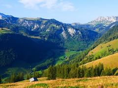 Meniggrund (Tal von Menigbach oder Narebach) Diemtigtal (Martinus VI) Tags: tags hinzufügen diemtigtal diemtigen zwischenflüh august y190831 wanderung bergwanderung keymahi0068 kanton de canton bern berne berna berner bernese schweiz suisse suiza switzerland svizzera swiss martinus6 martinus6xy martinus vi hillside