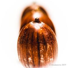 Nuts (Desdanova) Tags: naturalpatterns nuts stripes brown macromondays macro white stockton california unitedstatesofamerica inarow