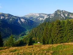 Diemtigtal (Meniggrund bis Rothore) (Martinus VI) Tags: tags hinzufügen diemtigtal diemtigen zwischenflüh august y190831 wanderung bergwanderung keymahi0068 kanton de canton bern berne berna berner bernese schweiz suisse suiza switzerland svizzera swiss martinus6 martinus6xy martinus vi hillside