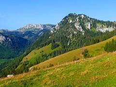 Diemtigtal aus Sicht Hinder Tärfete Erlenbach i.S. (Martinus VI) Tags: tags hinzufügen diemtigtal diemtigen zwischenflüh august y190831 wanderung bergwanderung keymahi0068 kanton de canton bern berne berna berner bernese schweiz suisse suiza switzerland svizzera swiss martinus6 martinus6xy martinus vi hillside