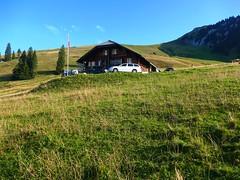 Alts Läger Hinder Tärfete Erlenbach i.S. (Martinus VI) Tags: tags hinzufügen diemtigtal diemtigen zwischenflüh august y190831 wanderung bergwanderung keymahi0068 kanton de canton bern berne berna berner bernese schweiz suisse suiza switzerland svizzera swiss martinus6 martinus6xy martinus vi hillside