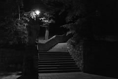 Mödling, Lower Austria (lebre.jaime) Tags: austria upperaustria mödling architecture nightphotography nocturnal digital fullframe ff fx stairs nikon d600 nikkorafs1735f28d bw blackwhite noiretblanc nb pretobranco pb affinity affinityphoto