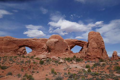Arches-North and South Windows
