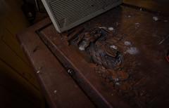 IMGP0689 (ferm93) Tags: abandoned asylum kyrka mentalsjukhus övergivet öde ödehus moody dark deserted creepy thepurge portraits porträtt satan