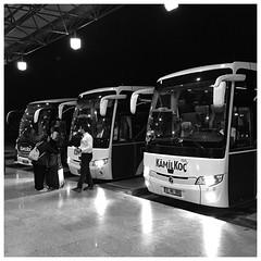 Intercity buses, Eskişehir, Turkey P063 (Streets.and.Portraits) Tags: turkey eskişehir travel blackandwhite bus monochrome station blackwhite coach terminal transportation iphone eskisehir