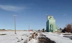 Anglų lietuvių žodynas. Žodis grain elevator reiškia grūdų saugykla lietuviškai.