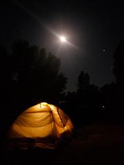 pinnacles national park (ajd808) Tags: night tent moon pinnacles camping nationalpark stars