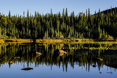 Lake Reflections (Bernie Duhamel) Tags: indianpeakswilderness ward colorado frontrange greatphotographers teamsony rockymountains bernie duhamel sonya7riii sonyfe2470mm reflection water lake lily rock trees fall