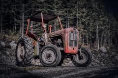 Ferguson 20190922 (johan.bergenstrahle) Tags: 2019 aurorahdr captureone ferguson finepicsse fordon hdr höst autumn morning sverige sweden tractor traktor vehicle