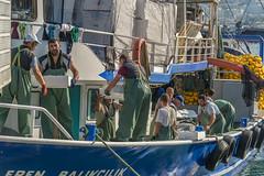 landing the catch (stevefge) Tags: 2019 kusadasi turkey boats fishing boat people candid unsuspectingprotagonists unsuspecting men fish nikon reflectyourworld work