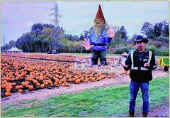 Howard the Gnome . . . on the left  (5k views) (Bill 3 Million views) Tags: sphinx egypt galeyfarms farm strawberrie crops pumpkins blenkinsop greenway ebike lochside gnome howardthegnome robgaley halloween trainrides cheknews