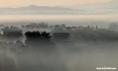 Μία καινούργια μέρα - Ein neuer Tag - A new day (ᗰᗩᖇᓰᗩ ☼ Xᕮ∩〇Ụ) Tags: greece morgens nebel morning moments momente griechenland canoneos1100d ©mariaxenou ilovenature fog ομιχλή ελλάδα στιγμέσ πρωί δυτικήπελοπόννησοσ ατμόσφαιρα τοπίο θέα