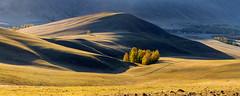 Осенний Урал #ural,  #пейзажи, #природа, #панорама, #окоём, #пастораль, #натура, #восход, #осень, #горы, #люблюфото, #Урал, #березка, #туман, #лучи, #южныйурал, #photorussia, #etonashural, #uralinsta, #foto_ural, #russ_beauty, #natureofrussia, #natureofru (ЛеонидМаксименко) Tags: natureofrussia лучи осень пастораль окоём люблюфото горы природа красиваяроссия пейзажи восход natureofrussiaru березка uralinsta панорама туман etonashural southural russbeauty photorussia fotoural натура урал пейзажироссии южныйурал ural