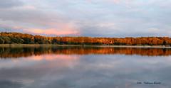Autumn sunset (Patricia Buddelflink) Tags: lake sunset autumn garden nature