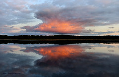 Autumn sunset-Angel wings (Patricia Buddelflink) Tags: lake nature autumn sunset clouds