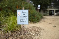 (louisa_catlover) Tags: karwarra karwarraaustraliannativebotanicgarden botanicgarden garden nature australian native kalorama dandenongs melbourne victoria australia spring october outdoor