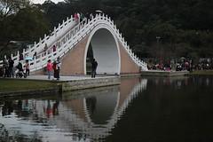 IMG_3428 (vixyao) Tags: 2016 201602 20160212 大湖公園 大湖 台北