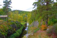 Autumn Trollhättan🍁 (Bo Ragnarsson) Tags: autumn trollhättan fall höst autumncolors höstfärger landscape höstlandskap nature