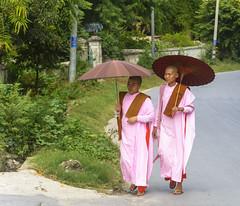 A passeggio (forastico) Tags: forastico d7100 nikon myanmar birmania monache monaca ombrello passeggio sagaing earthasia