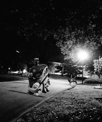midnight ride b&w......2019-10-05 (wintersoul1) Tags: toys totoro catbus bw night