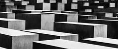 Memorial to the Murdered Jews of Europe (George Plakides) Tags: memorialtothemurderedjewsofeurope holocaust petereisenman burohappold berlin denkmalfürdieermordetenjudeneuropas holocaustmemorial holocaustmahnmal concrete slabs stelae elitegalleryaoi bestcapturesaoi aoi