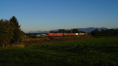 "193 278 ,,SayYesToEurope"" / ELL/TXL - Rann (lukasrothmann) Tags: bayern oberbayern heimat sayyestoeurope klv rann 193 278 trains zug lok lokomotive train ell txl txlogistik"