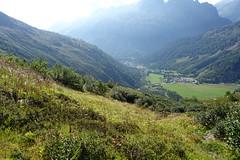 Trail down to Le Tour @ Domaine de Balme - Vallorcine @ Chamonix