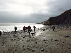 Fossil hunting on the Jurassic Coast (altamons) Tags: altamons fossils greatbritain england gb dorset lymeregis jurassic jurassiccoast ammonites travel trip vacation holiday holidays