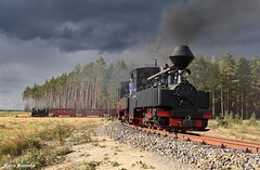Brigadelokomotiven (Marco Moerland) Tags: schwererberg abzweigmühlrose mühlrose tagebau dagbouw bos weer lucht wolken bui regenbui donderwolken himmel hemel noodweer regen rain nochten brigadelokomotive heeresfeldbahn smalspoor narrowgauge schmalspur voieetroite waldbahn waldeisenbahn muskau badmuskauer tanago ddr duitsland germany deutschland allemange gdr deutsche demokratische republik stoom dampf vapeur steam train trein treintje kleinbahn saksen sachsen lokomotief lokomotive locomotive bahn eisenbahn spoorweg railway rail 993315 993317 993301 abzweig wald wood forest bois
