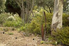 sculpture by Juet (louisa_catlover) Tags: karwarra karwarraaustraliannativebotanicgarden botanicgarden garden nature australian native kalorama dandenongs melbourne victoria australia spring october outdoor