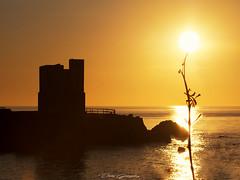 Sol sostenido (danixmen) Tags: olympus omd paisaje landscape dreamscape playa sea agua water em1ii sunset puestadesol torre tower sol sun contraluz sunrise 70200