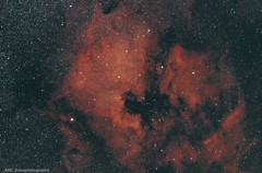 NGC 7000 & IC 5070North America and Pelican nebulas (sparkdawg068) Tags: nebula texas space zwo night sky redcat